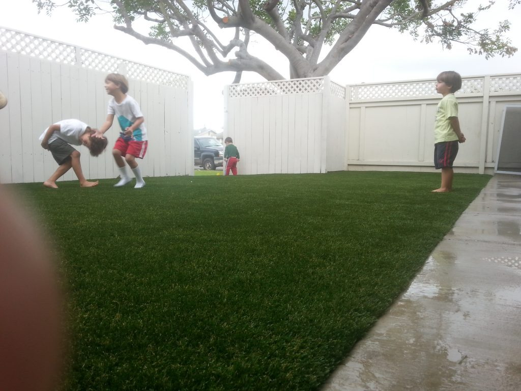 Synthetic Lawn Company Solana Beach, Top Rated Artificial Turf Installation Company