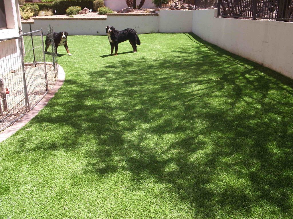 Synthetic Lawn Pet Turf Company Solana Beach, Best Artificial Pet Turf Pricing