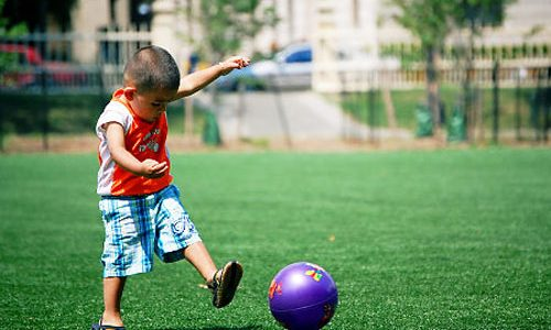 Top Rated Synthetic Turf Company Solana Beach, Artificial Lawn Play Area Company