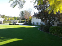 Synthetic Turf Services Company, Artificial Grass Residential and Commercial Projects in Solana Beach